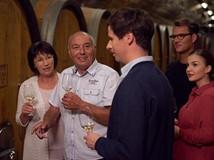Wollten Sie schon immer mal wissen, was passiert, bevor ein Wein auf die Flasche kommt? Was der Unterschied zwischen einem Tank und einem Fass ist? Dann kommen Sie doch auf einen Ausflug mit uns in den Keller bzw. in den Weinberg.