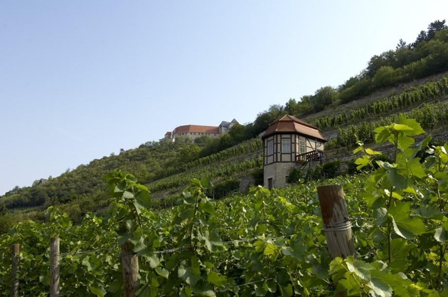 Weingenuss im Kulturdenkmal